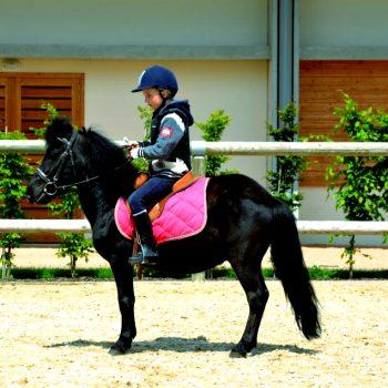 pole-international-du-cheval-deauville-ecole-poney-2